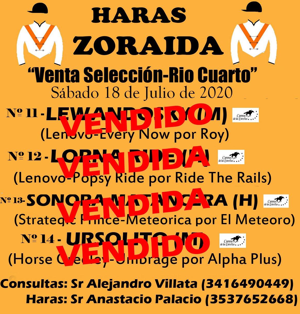 HS ZORAIDA - PRODUCTOS