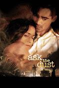 Pregúntale al viento (2006) ()