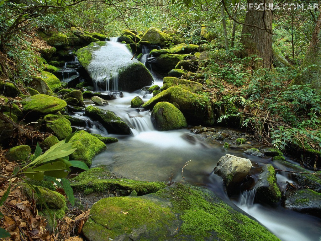Imagenes paisajes hermosos 6