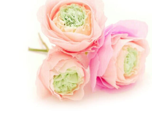 crepe-paper-flowers