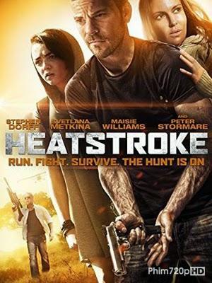 Heatstroke 2013 poster