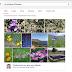 Google + Fotoğraflarınız Arama Çubuğunda