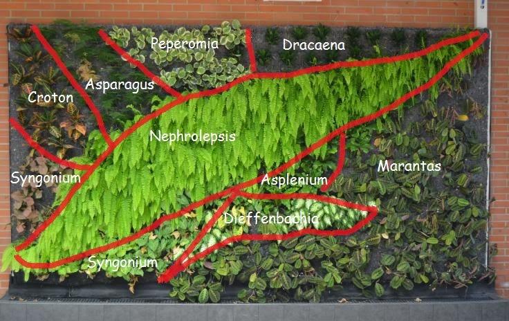 Jardines Verticales Como Se Hacen Diseos De Jardines