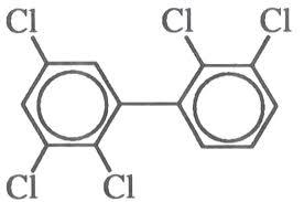 bifenilos-policlorados-tóxicos