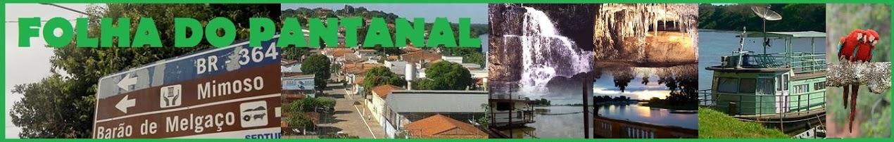 FOLHA DO PANTANAL