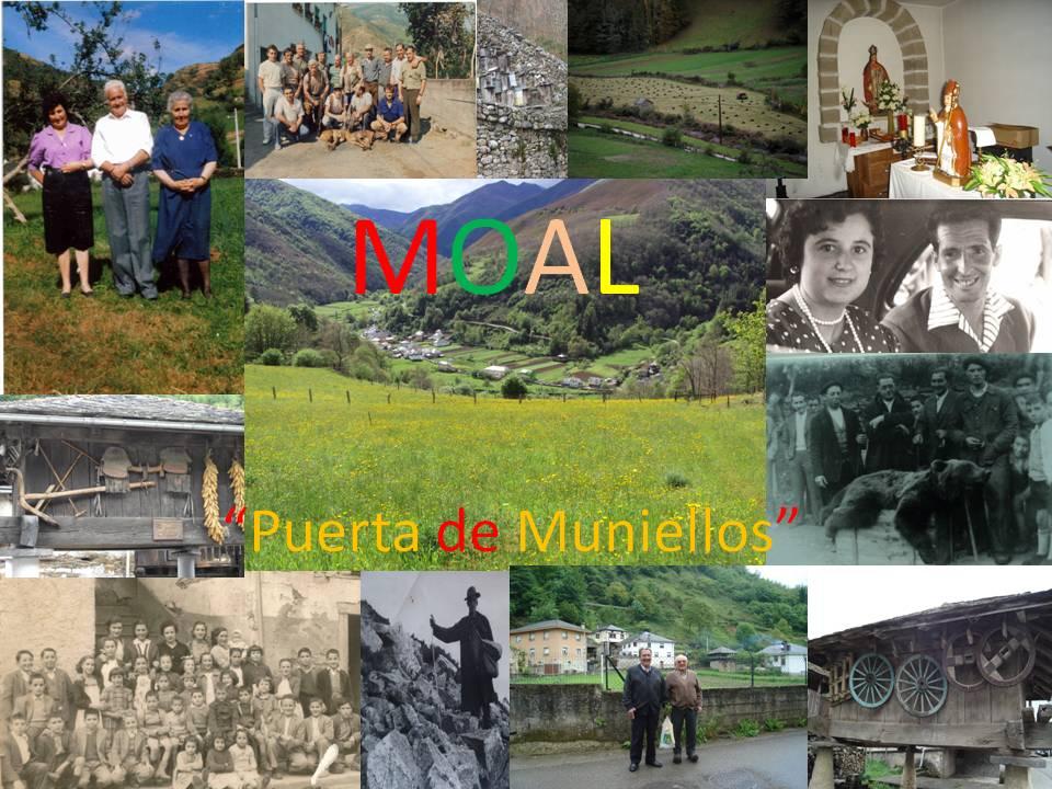 """MOAL """"Puerta de Muniellos"""""""