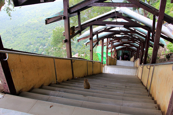 Escalera de subida al Monte Popa - Myanmar