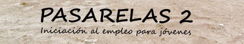 Pasarelas2