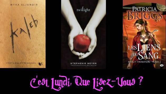 http://honey-b-books.blogspot.com/2015/04/c-lundi-que-lisez-vous-5.html