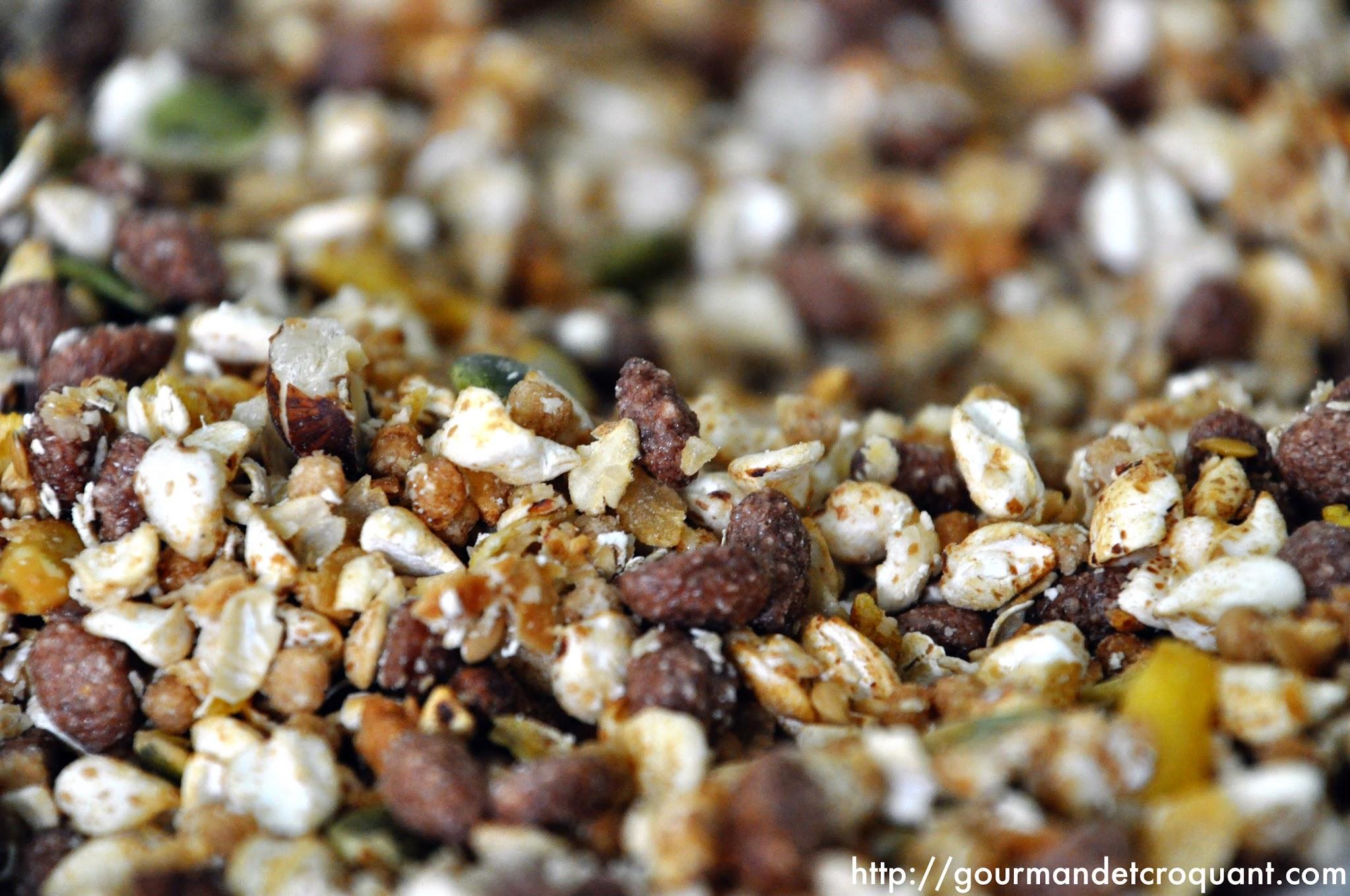 sans-sucre-noix-lin-tournesol-cereales