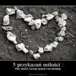 www.demotywatory.pl_-150x150