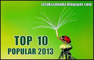 Top 10 Paling Popular 2013