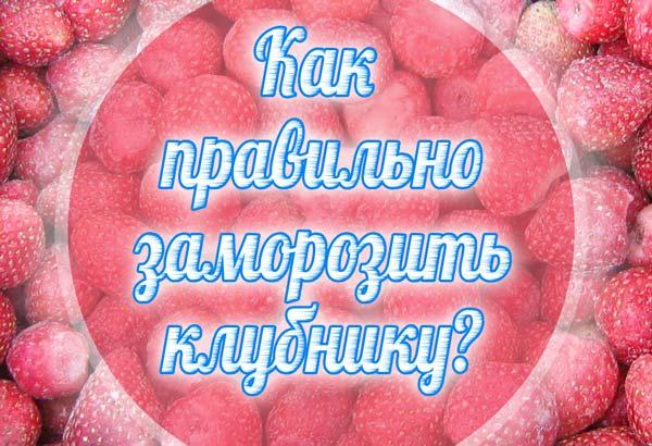 Как замораживать клубнику