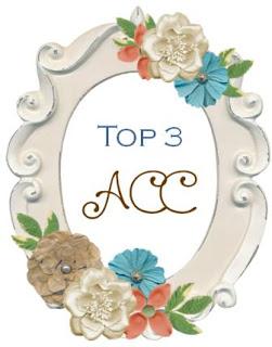 TOP 3 DESAFIO ACC 2017
