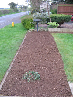 Freshly dug garden border.