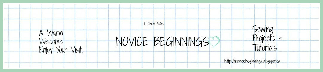 Novice Beginnings