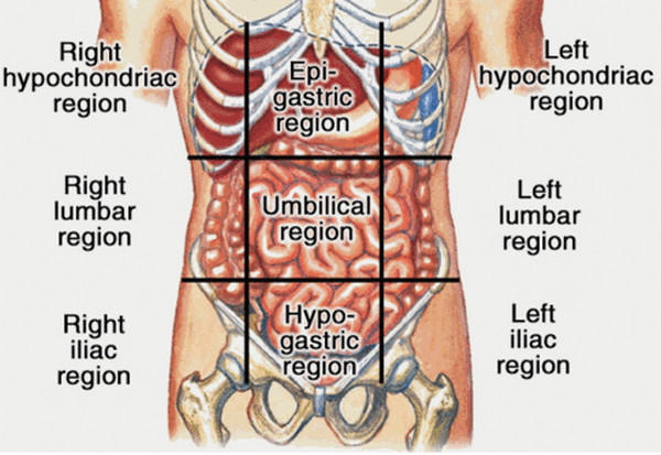 Abdominal Pain Upper Right Quadrant http://www.ihealthblogger.com/2013/03/liver-pain-location-causes-symptoms-diagnosis-treatment.html