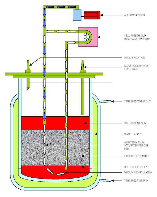 Types of Bioreactor