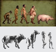 LA TEORIA DE LA EVOLUCIÓN DE LAS ESPECIES