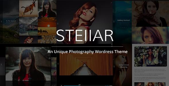 Stellar Responsive Creative and Photography Theme