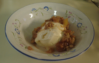 Apple Crisp served on top of ice cream