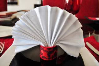 Fan Napkin Folding Example #4