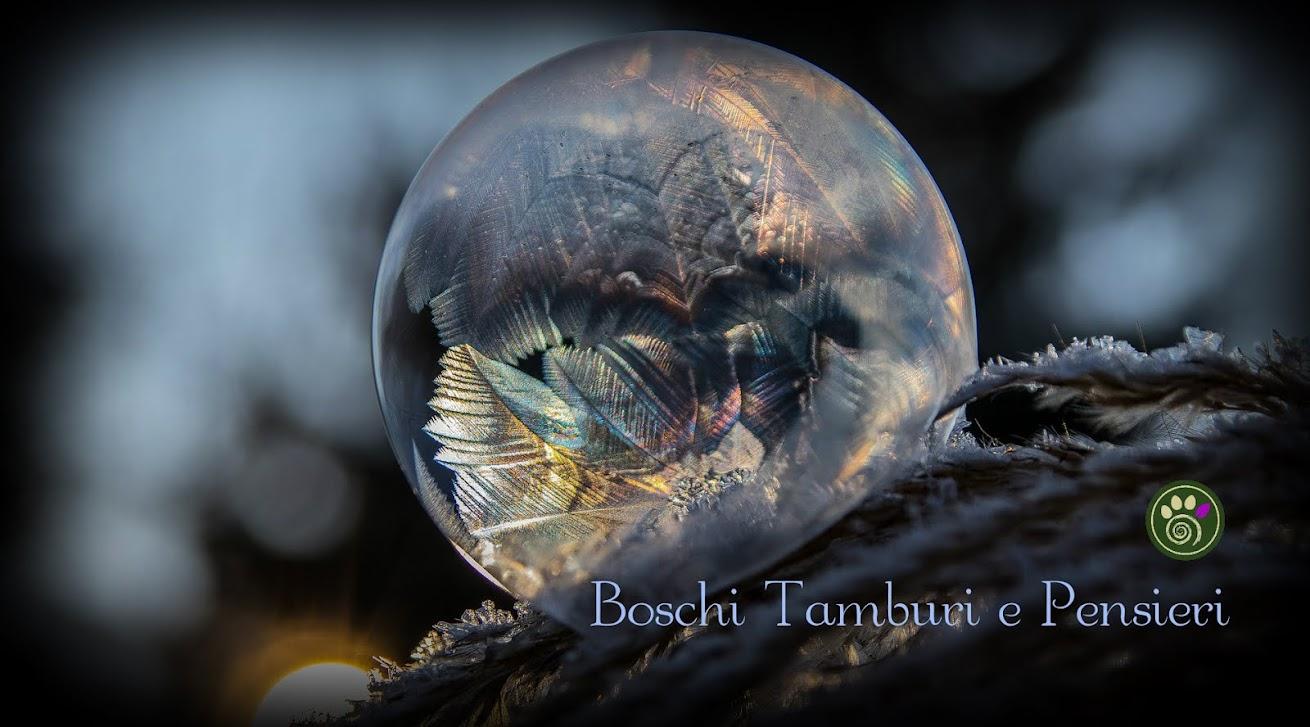 Boschi, Tamburi e Pensieri ::: Druidismo e Sciamanesimo