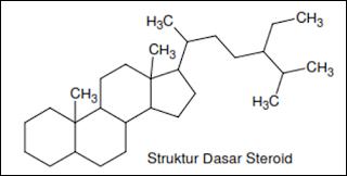 Struktur dasar steroid