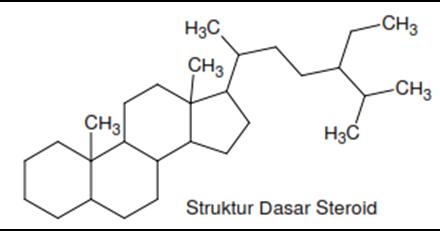 pengertian triterpenoid dan steroid