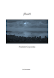 ¡Flash!, de Franklin Goycoolea