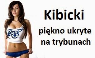 Kibicki