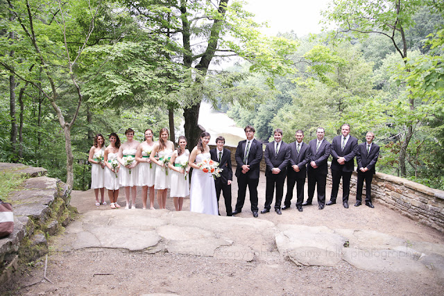 photo of a wedding party at Sunset Point at Turkey Run State Park
