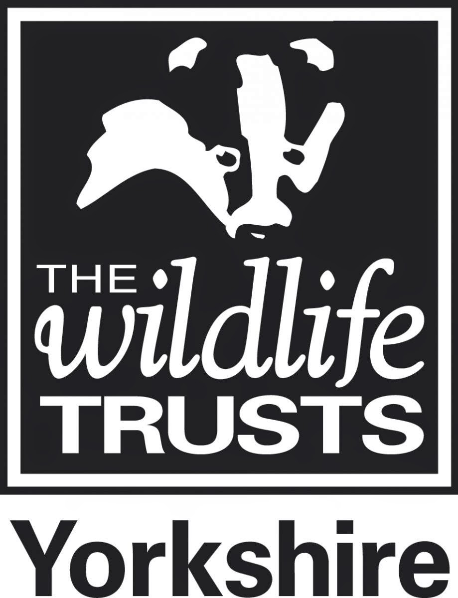 Yorkshire Wildlife Trust Vacancy: Regional Manager - Humberhead Levels and Coalfields