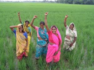 Victoire des paysannes malgré l'exploitation aux champs d'esclavage
