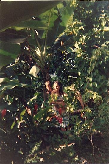 Belle Martinique !! Mon jardin !!