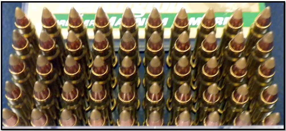 Ammunition discovered in carry-on bag at FSD.