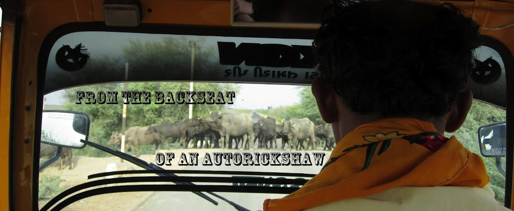 From the backseat of an autorickshaw