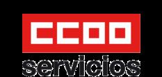 Sección Sindical CCOO HPE