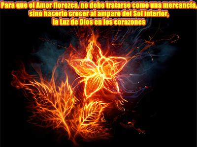 Tú provienes del Amor, eres la Expresión misma del Amor, tu misión es hacerlo florecer en la Tierra.