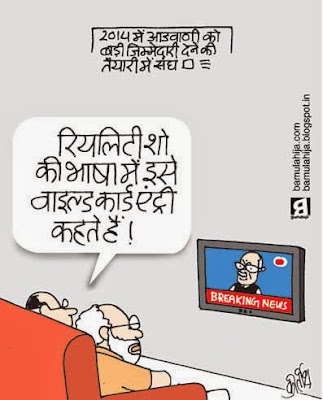 lal krishna advani cartoon, bjp cartoon, narendra modi cartoon, election 2014 cartoons, cartoons on politics, indian political cartoon, reality show