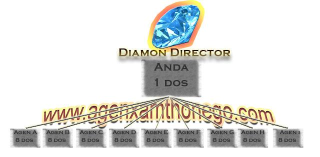 Diamond director