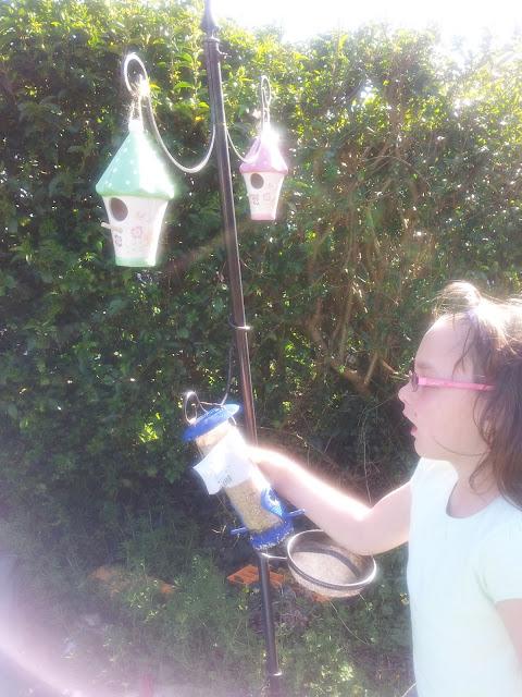 Planting Growing Sunflower Tomato Seeds Messy Play Matilda Mae