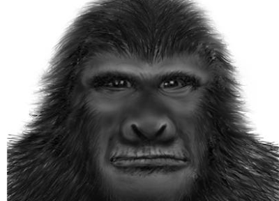 Migrating Bigfoot Podcast