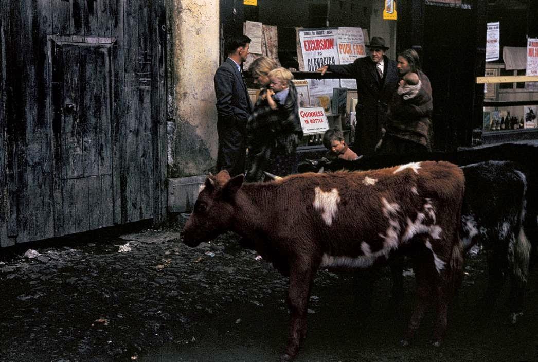 Ирландия 1954 год (фотоподборка)