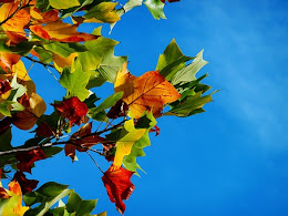 Danza conmigo, suave brisa de otoño