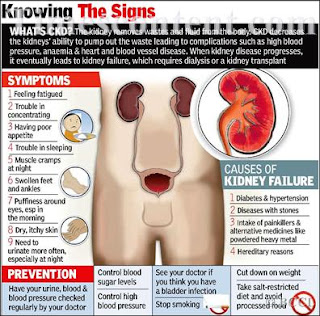 liver disease in dogs when to euthanize