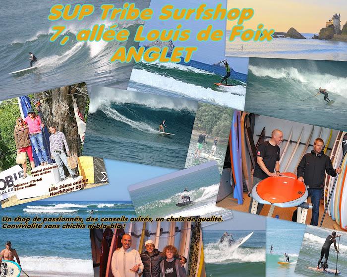 BIENVENUE CHEZ LES SUP SURFERS