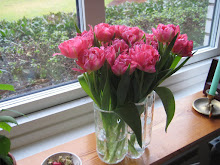 Veckans rosbukett/blommor