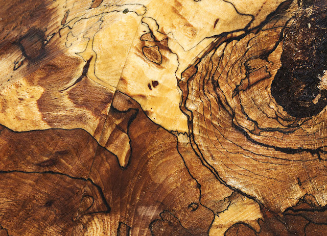 Sawn deadwood near Leaves Green, 15 December 2012.