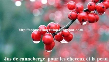 traitement_acné_canneberge